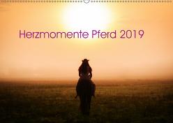 Herzmomente Pferd 2019 (Wandkalender 2019 DIN A2 quer) von Gauger,  Jenny