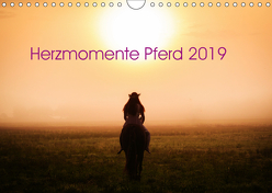 Herzmomente Pferd 2019 (Wandkalender 2019 DIN A4 quer) von Gauger,  Jenny