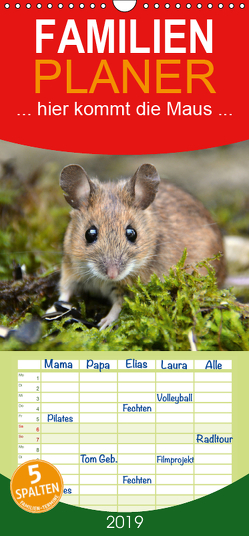 … hier kommt die Maus … – Familienplaner hoch (Wandkalender 2019 , 21 cm x 45 cm, hoch) von GUGIGEI