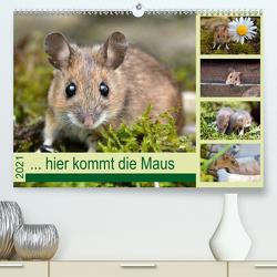 … hier kommt die Maus … (Premium, hochwertiger DIN A2 Wandkalender 2021, Kunstdruck in Hochglanz) von GUGIGEI