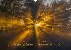 Hier und jetzt im Teufelsmoor – 2021 (Wandkalender 2021 DIN A3 quer) von Arndt,  Maren