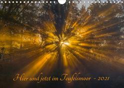 Hier und jetzt im Teufelsmoor – 2021 (Wandkalender 2021 DIN A4 quer) von Arndt,  Maren