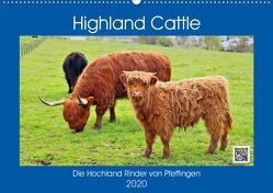 Highland Cattle, die Hochlandrinder aus Pfeffingen (Wandkalender 2020 DIN A2 quer) von Geiger,  Günther