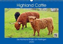 Highland Cattle, die Hochlandrinder aus Pfeffingen (Wandkalender 2020 DIN A3 quer) von Geiger,  Günther