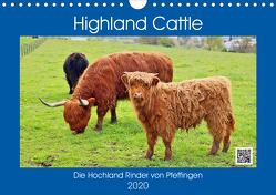 Highland Cattle, die Hochlandrinder aus Pfeffingen (Wandkalender 2020 DIN A4 quer) von Geiger,  Günther