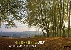 Hildesheim 2021 (DIN A3-Wandkalender) von Lenferink,  Franziska