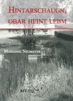 Hintarschaugn, obar heint lebm von Neumayer,  Marianne