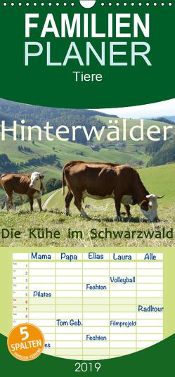 Hinterwälder – Die Kühe aus dem Schwarzwald – Familienplaner hoch (Wandkalender 2019 , 21 cm x 45 cm, hoch) von Goldscheider,  Stefanie