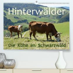Hinterwälder – Die Kühe aus dem Schwarzwald (Premium, hochwertiger DIN A2 Wandkalender 2020, Kunstdruck in Hochglanz) von Goldscheider,  Stefanie