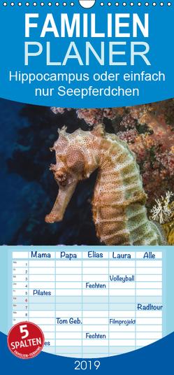 Hippocampus oder einfach nur Seepferdchen – Familienplaner hoch (Wandkalender 2019 , 21 cm x 45 cm, hoch) von Gödecke,  Dieter