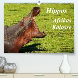 Hippos – Afrikas Kolosse (Premium, hochwertiger DIN A2 Wandkalender 2021, Kunstdruck in Hochglanz) von Woyke,  Wibke
