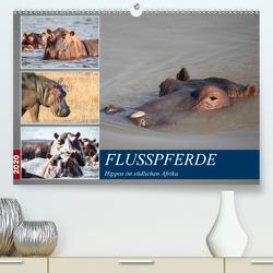 Hippos im südlichen Afrika (Premium, hochwertiger DIN A2 Wandkalender 2020, Kunstdruck in Hochglanz) von Quentin,  Udo