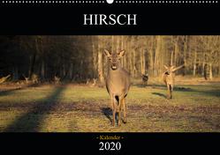 Hirsch Kalender 2020 (Wandkalender 2020 DIN A2 quer) von Daniel Fotografie,  David