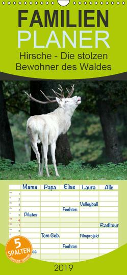 Hirsche – Die stolzen Bewohner des Waldes – Familienplaner hoch (Wandkalender 2019 , 21 cm x 45 cm, hoch) von Klatt,  Arno