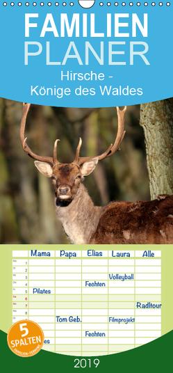 Hirsche – Könige des Waldes – Familienplaner hoch (Wandkalender 2019 , 21 cm x 45 cm, hoch) von Klatt,  Arno