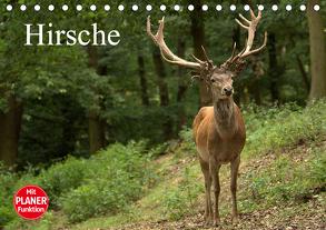 Hirsche (Tischkalender 2020 DIN A5 quer) von Klatt,  Arno