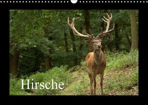 Hirsche (Wandkalender 2018 DIN A3 quer) von Klatt,  Arno