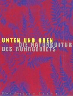 Historama-Trilogie Ruhr 2000 / Unten und Oben. Die Naturkultur des Ruhrgebiets von Borsdorf,  Ulrich, Stottrop,  Ulrike