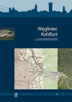 Historisch-topographischer Atlas schlesischer Städte von Debicki,  Jacek, Haslinger,  Peter, Kreft,  Wolfgang, Strauchold,  Grzegorz, Zerelik,  Roscislaw