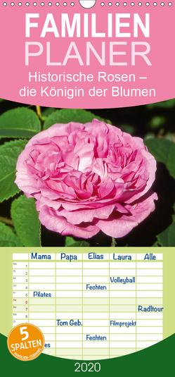 Historische Rosen – die Königin der Blumen – Familienplaner hoch (Wandkalender 2020 , 21 cm x 45 cm, hoch) von CALVENDO