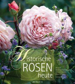 Historische Rosen heute von Barlage,  Andreas