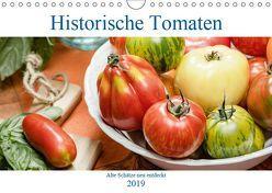 Historische Tomaten – Alte Schätze neu entdeckt (Wandkalender 2019 DIN A4 quer) von Meyer,  Dieter