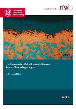 Hochtemperatur-Oxidationsverhalten von Kupfer-Chrom-Legierungen von Berndzen,  Dirk