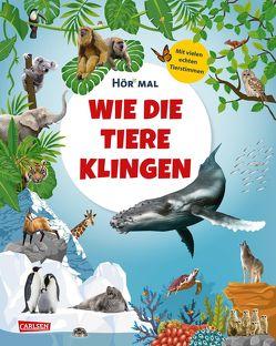 Hör mal: Wie die Tiere klingen von Klostermeyer,  Sandra, Peterson,  Anke