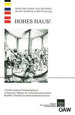 Hohes Haus! von Adlgasser,  Franz, Institut für Neuzeit- und Zeitgeschichtsforschung an der Österreichischen Akademie der Wissenschaften, Malínská,  Jana, Rumpler,  Helmut, Velek,  Luboš