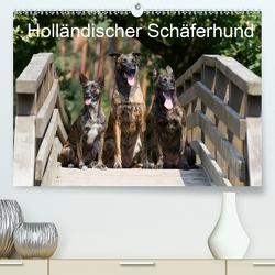 Holländischer Schäferhund (Premium, hochwertiger DIN A2 Wandkalender 2021, Kunstdruck in Hochglanz) von Verena Scholze,  Fotodesign