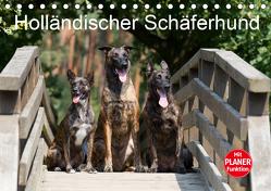 Holländischer Schäferhund (Tischkalender 2020 DIN A5 quer) von Verena Scholze,  Fotodesign