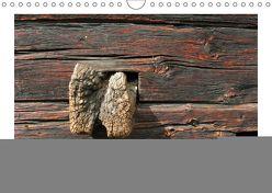 Holz – so vielfältig (Wandkalender 2019 DIN A4 quer) von Rohwer,  Klaus