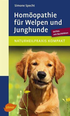 Homöopathie für Welpen und Junghunde von Specht,  Simone