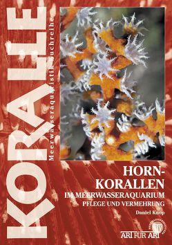 Hornkorallen im Meerwasseraquarium von Knop,  Daniel