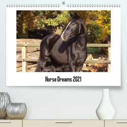 Horse Dreams (Premium, hochwertiger DIN A2 Wandkalender 2021, Kunstdruck in Hochglanz) von Meding,  Cerstin