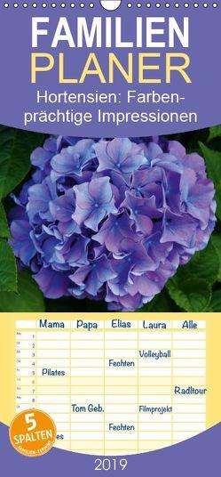 Hortensien – Farbenprächtige Impressionen aus dem Garten – Familienplaner hoch (Wandkalender 2019 , 21 cm x 45 cm, hoch) von Lehmann,  Steffani
