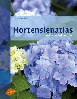 Hortensienatlas von Mallet,  Corinne