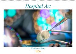 Hospital Art (Wandkalender 2020 DIN A2 quer) von Lensviper