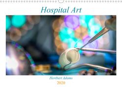 Hospital Art (Wandkalender 2020 DIN A3 quer) von Lensviper
