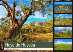 Hoya de Huesca – Im Norden Aragons (Wandkalender 2020 DIN A2 quer) von LianeM