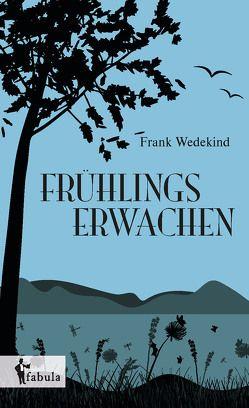 Huckleberry Finns Abenteuer von Twain,  Mark
