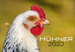 Hühner 2022