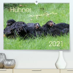 Hühner im eigenen Garten (Premium, hochwertiger DIN A2 Wandkalender 2021, Kunstdruck in Hochglanz) von Stephan,  Nicole