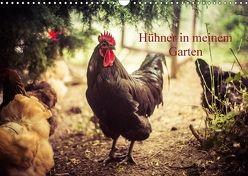 Hühner in meinem Garten (Wandkalender 2018 DIN A3 quer) von Meyer,  Manuela