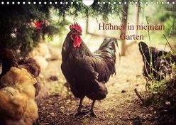 Hühner in meinem Garten (Wandkalender 2018 DIN A4 quer) von Meyer,  Manuela