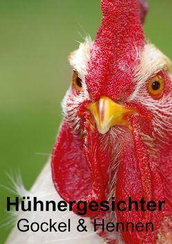 Hühnergesichter • Gockel & Hennen (Posterbuch DIN A4 hoch) von Stanzer,  Elisabeth