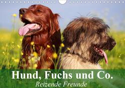Hund, Fuchs und Co. Reizende Freunde (Wandkalender 2021 DIN A4 quer) von Stanzer,  Elisabeth