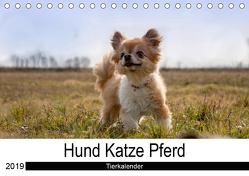 Hund Katze PferdAT-Version (Tischkalender 2019 DIN A5 quer) von Hutterer Fotografie,  Martha
