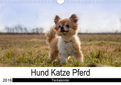 Hund Katze PferdAT-Version (Wandkalender 2019 DIN A4 quer) von Hutterer Fotografie,  Martha