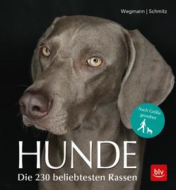 Hunde von Schmitz,  Siegfried, Wegmann,  Angela